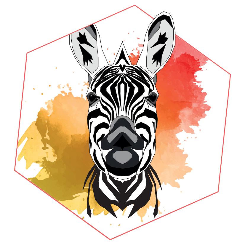 La boutique Suivez le Zebre
